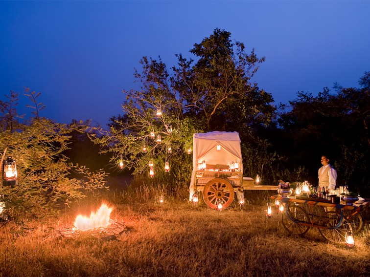 Unique Dining Experience at Pashan Garh, Panna National Park